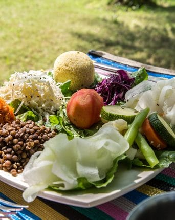 Picture of the Dune Health platter