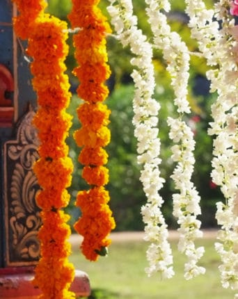 Pictures of flowers garlands in the dai of the wedding: It fills the air with delicious scents