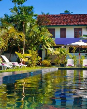 swimming pool view at Turtle Eco Beach Hotel