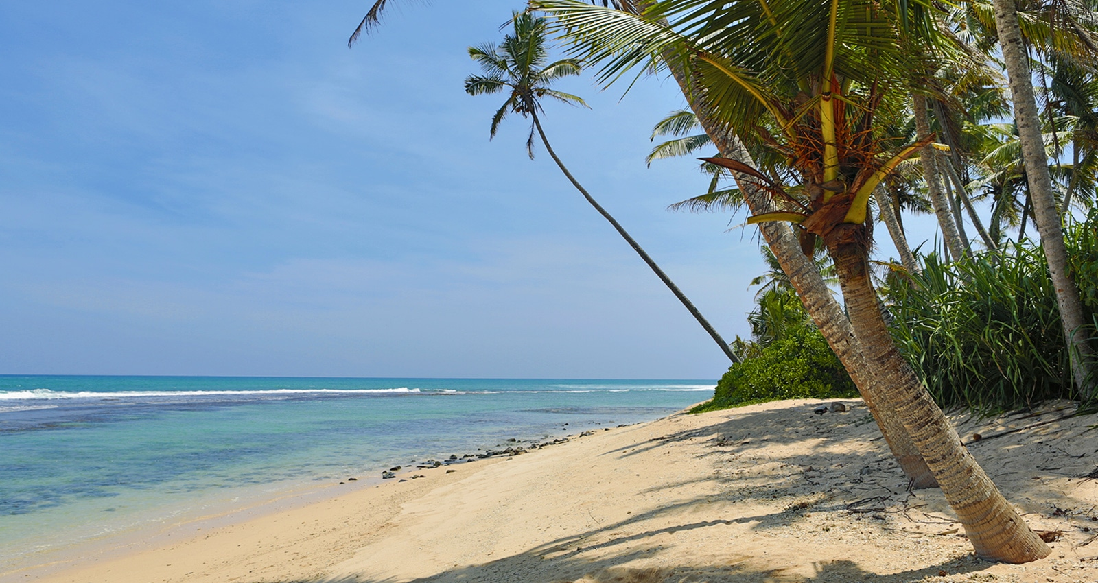 Turtle Eco Beach view